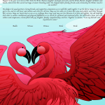 flamingos-in-love-ketubah
